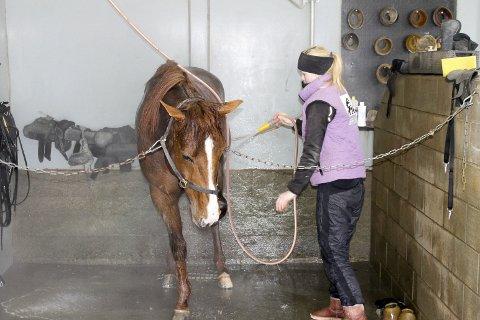 NYDUSJET: Lionel har funnet seg til rett i sitt nye miljø. Her får han en velfortjent dusj etter lørdagens treningsøkt.
