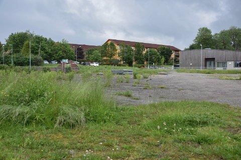 Leiligheter på skoletomt: På denne tomta, der Løkentunet er nærmeste nabo, kan det komme  nye leligheter. Kommunen har fått 11 millioner for den tidligere skoletomta.