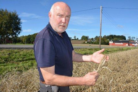 Svend Arild Uvaag, leder i Østfold Bondelag, sier det blant annet skal forhandles om kiloprisen for korn.