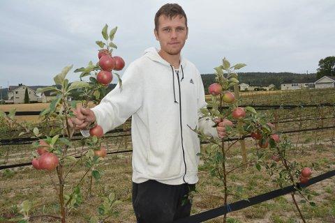 FRUKTBONDE: Marius Bang Johansen dyrket blant annet epler på Glomvik gård i 2018. Nå ligger gården brakk i påvente av nye eiere.