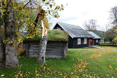 Vindfall: Ei bjørk har måttet gitt tapt i vinden. Den knakk i to og ligger delvis over stallen ved Soknestuggu i Snåsa.