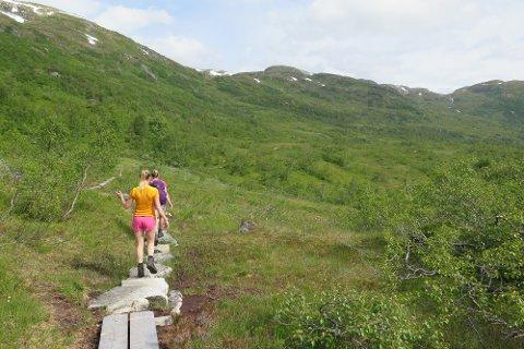 STØLSHEIMEN: Den t-merkte stien frå Stølsvatnet til Solrenningane har god tilrettelegging for vandring i Stølsheimen.