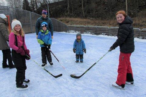 MEIR IS OG KULDE I VENTE: Desse borna gler seg over at kulda held fram slik at dei kan stå på skøyter. Kaja, Niklas, Ivar og Mari på skøyteisen i Seimsdalen søndag.