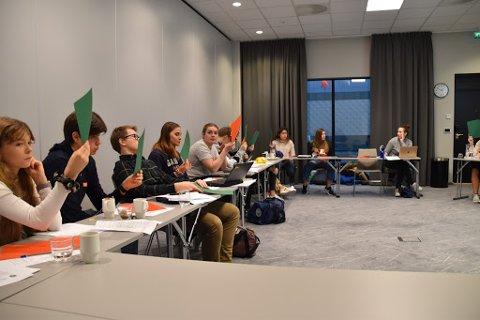 Ungdomsrådet møtes cirka seks ganger i året og behandler saker som omhandler ungdom.