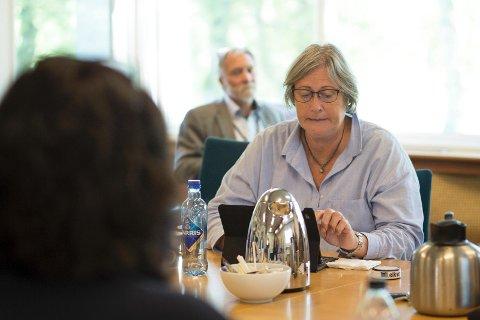 Nora Nilsen (H) mener politikerne i utvalg for plan og miljø ikke kan redusere antall møter per år. - Det kan gå ut over byggesaker og fremdrift for folk og for utbyggere, mener hun.