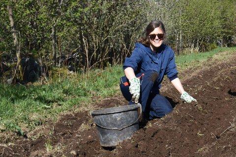 Journalist Kristine M. Stensland deler sine erfaringer som medlem i andelsjordbruk.