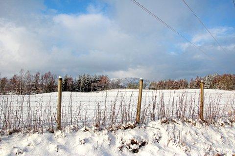 Slik så det ut på Leite ved Jørpeland tirsdag formiddag. En aldri så liten påminnelse om hvor vakker vinteren egentlig kan være.
