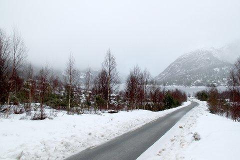 Scana eiendom vil bygge 22 fritidsboliger i skråningen til venstre, ned mot Liarvatnet.