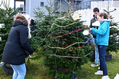 PYNTA BUBILSKOGEN: Dina Bø, Sander Norgren Rørheim og Ida Bergeland pynta skogen ved bubilparkeringa i Jørpelandsvågen med eigenprodusert julepynt.