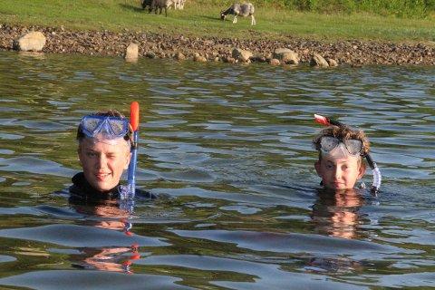 SNORKLAR OFTE: Daniel Fiskå Herigstad og Hartvig Schnell har snorkla over alt på Jørpeland den siste månaden og kan vera uti i fleire timar om gongen.
