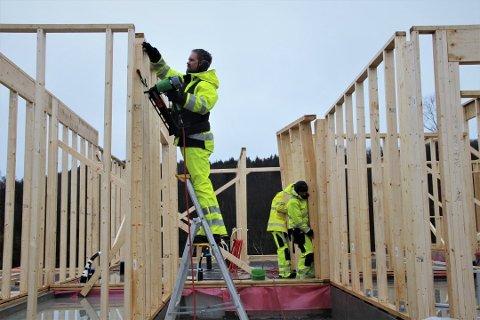 BOLIGBYGGING: På Tau har ny boligutbygging i stor grad skjedd i Taumarka. Men på Jørpeland bygges det mer. Arkivfoto: Stine Serigstad