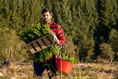 MICROSOFT-SKOG: Ardian Torgersen frå Trefadder har tilbrakt mykje tid i klimaskogen på Hagalid det siste året.