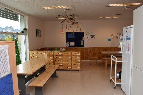 Fortsatt egenbetaling: Svelvik kommune vil fortsette å ta betalt for SFO, også for barn med særskilte behov.