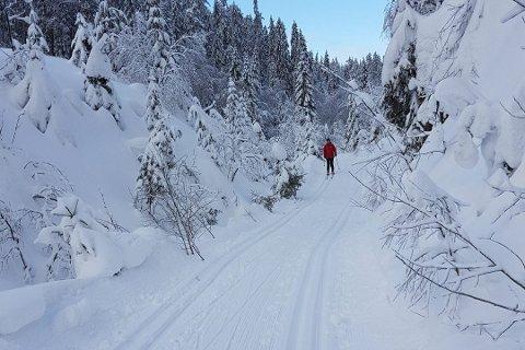 FRA ARKIVET: Dette bildet er tatt fra Båsenrunden i fjor vinter.