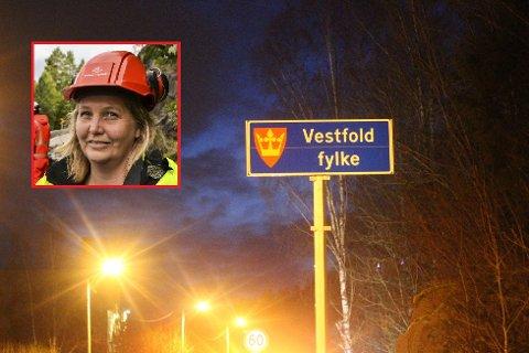 Anita Tveiten (innfelt) i Statens vegvesen sier det er dårlig gjort at noen har stjålet kommuneskilt rundt omkring. På den gamle grensa mellom Drammen og Svelvik kommune har noen stjålet «Svelvik kommune»-skiltet. På Sande-siden er skiltet også borte.
