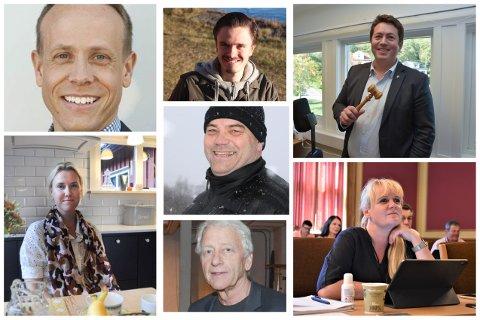 De folkevalgte fra Svelvik med plass i kommunestyret i Drammen kommune.