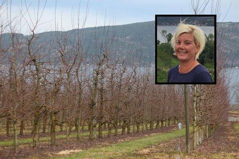 60 DEKAR EPLER: May Lisbeth Justad og mannen har ved Ådne Gård 40 dekar plommer og 60 dekar epler.