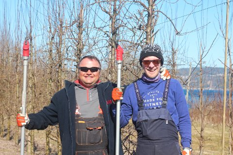 Lukasz Gozdziewski (t.v) og Thomasz Rudowski har god erfaring fra jobb på eple- og plommegården til familien Justad. Thomasz er i Svelvik for femte gang, mens  Lukasz er her for andre gang.
