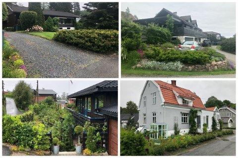 Disse fire hagene vant i fjor. I år kan en av vinnerne være fra Svelvik.