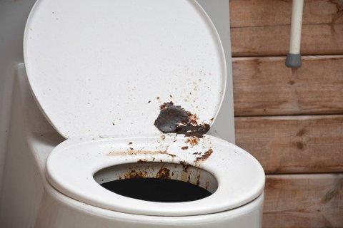 Slik så det offentlige toalettet ved Tangen fjordpark ut for en tid tilbake, men nå skal det, og andre toaletter, vaskes hver eneste dag.