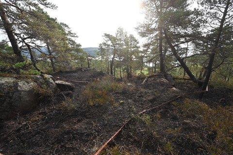 Sommeren 2020 var det en skogbrann på Berger.