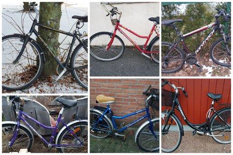 På én rusletur fant Trond Muri hele seks forlatte sykler.