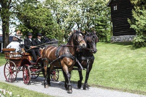 Tur: Mange ville bli med på rundturer med hest og kjerre.