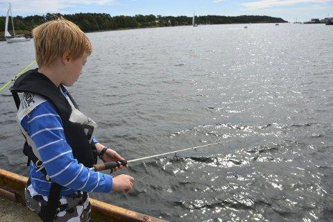 Konsentrert: Theo Bastian Henden (9) har fisket siden han var to år.