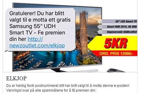 SMS: I tekstmeldingen som spres i stor fart torsdag, står det at mottakeren har vunnet en 55 tommers TV. Elkjøp, Expert og politiet advarer om nå om sms-svindelen. (Foto: Skjermdump)