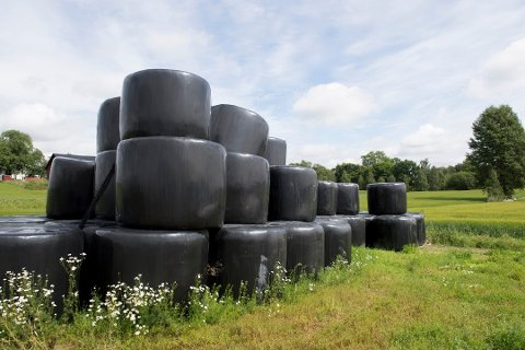 FARE FOR DYRA: Halm pakket i rundballeplast utgjør en fare for miljøet og dyra som får maten sin derfra.