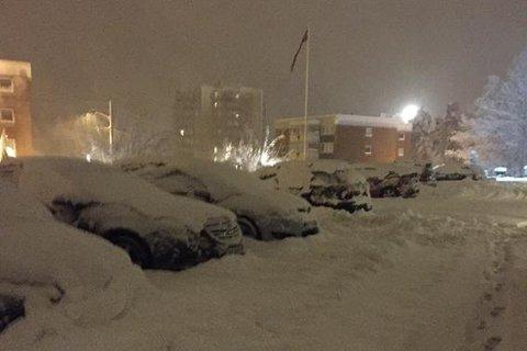 NEDSNØDD: Er søppeldunken din like nedsnødd som disse bilene, bør du måke vekk snøen slik at renovatørene får en enklere jobb med å tømme søpla di.