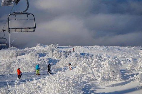 GLITRENDE FORHOLD: På Gaustablikk meldes det om 185 centimeter med snø. Dette bildet ble tatt i januar.  Foto: Fredrik Johansson/Gaustablikk skisenter