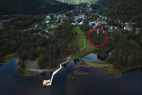 UTBYGGING: Det er i området til høyre i deler av skogsholtet opp mot eksisterende bebyggelse at politikere vil bygge leiligheter. foto: Dag Jenssen
