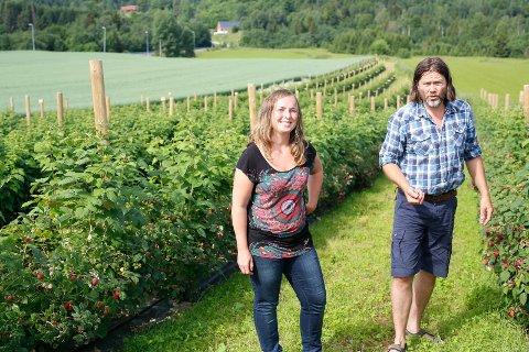 LEGGER NED: Birgitte Wærstad og Frode Eie ser seg nødt til å legge ned driften av bringebærproduksjon på Dolva gård i Melum.