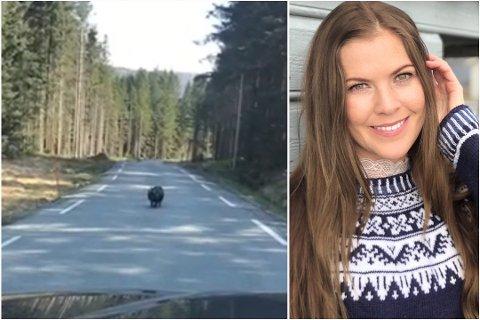 Miriam Berg Hovda (30) traff på et noe uvanlig dyr å møte langs veien tirsdag ettermiddag.