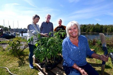 RØRT: Ellen haugdal Nilsen ble rørt til tårer over gaven fra Drangedal. Bak ser vi Signe Marie Aaslund, Christer Lilienberg og Helge Herøvik.