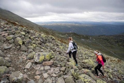 POPULÆRT: Mange velger å gå Gaustatoppen og besøke DNT-hytta. Foto: Torstein Bøe / NTB scanpix