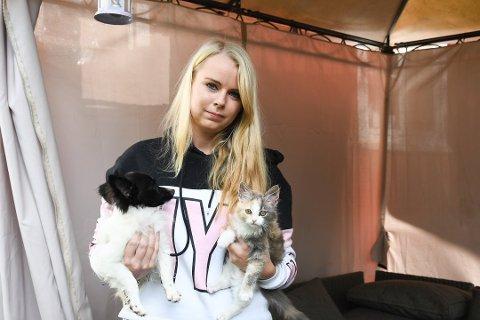 FORTVILET: I løpet av de siste ukene har tre av kattene til Eva-Lill blitt drept. Foto: Jeanette Brubakken