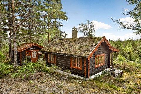 Haldensere kan dra på hytta, hvis hytta ligger i egen kommune.