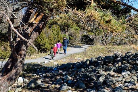 PÅ TUR: Amalie (4), Emil (4) og Celine (8) Lind Brusten samt pappa Espen Lind (42) var på tur på Mølen. Foto: Per Albrigtsen