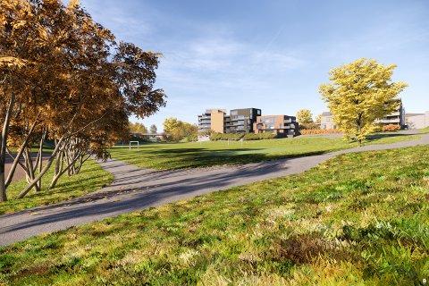 SLIK: En skisse viser at de nye boligene i Lundedalen i Skien.