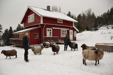 SMÅBRUK:  Bjørn Victor og Hilde Merete Slette har startet småbruk med sau.