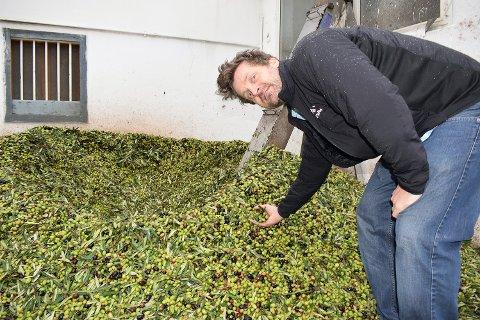 """GOD PRESONS: Aasmund Løk forteller at det ble mer oppmerksomhet rundt """"D'uggh - ekstra jomfru olivenolje"""" mye fortere enn de hadde sett for seg da de startet å importere olivenoljen."""