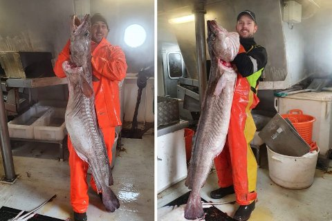 GULLFANGST: Amund Mehlum (t.v.) og Ole-Didrik Bruflat Abrahamsen viser stolt fram den over 185 centimeter lange langen i Langesund.