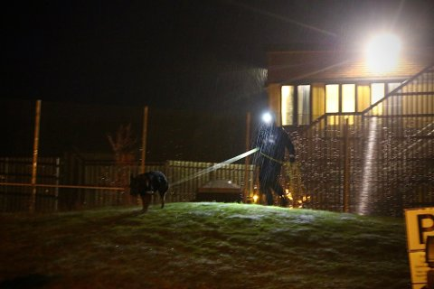 Politiet søkte i natt med hunder i området. Foto: Theo Aasland Valen
