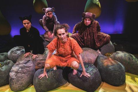"""KLASSIKER: Teater Ibsen kommer til Notodden teater med """"Jungelboken"""" torsdag 17. januar."""