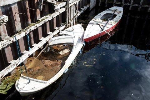 NESØYA: Like bortenfor Notodden bobilcamp, på Nesøya, ligger det nå tre båter i dårlig forfatning. Bare for ett års tid siden var kommunen og fjernet tre-fire andre båter fra området.