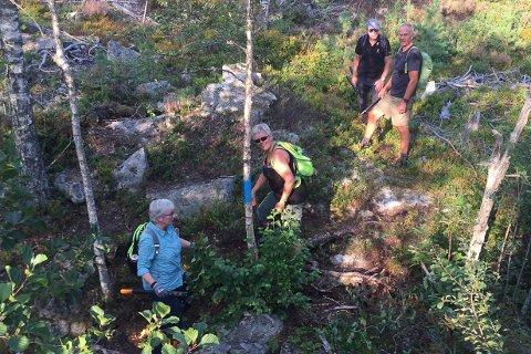 RYDDET: Randi Goberg Skevik og Sissel Sannesmoen rydder seg fram, mens Magne Hjukse og Torgeir Angard tar en pust i bakken.