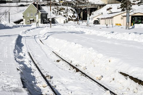 TOG: Både kommunen og fylkeskommunen kjemper sammen for å få Tinnosbanen på skinner. Her Tinnosbanen i en noe vinterligere drakt enn vi har nå for tiden.