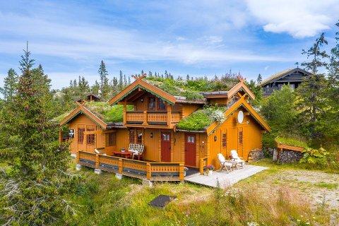 3 990 000: I Flugonfjell ligger denne store hytta ute for salg - på solsiden av Gaustatoppen.